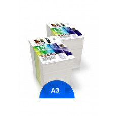 A3 color printing from online file (price per page)